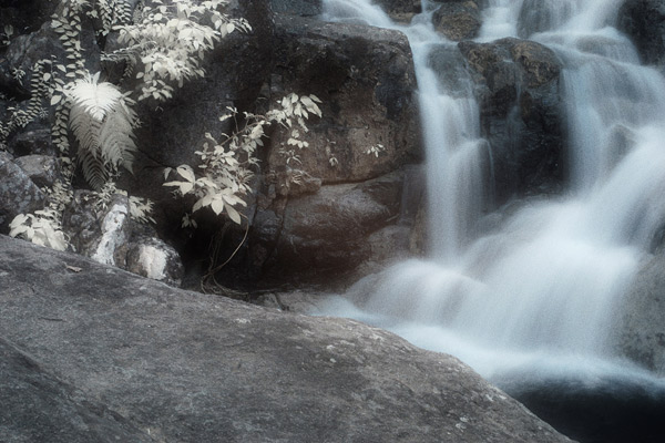 This waterfall picture was taken at 1/4 second and the effect created is identical to that of a conventional camera.