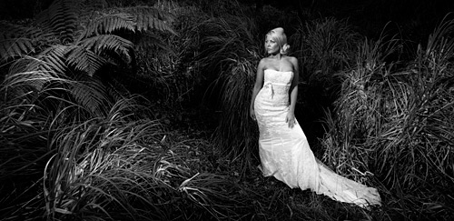 Speedlight Wedding Photography: Shooting Weddings Workshop In Cork
